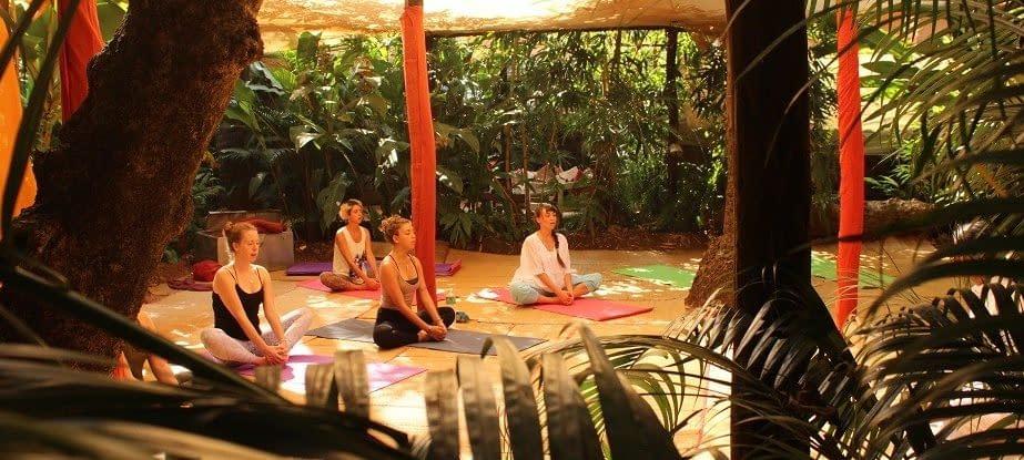 kundalini yoga india